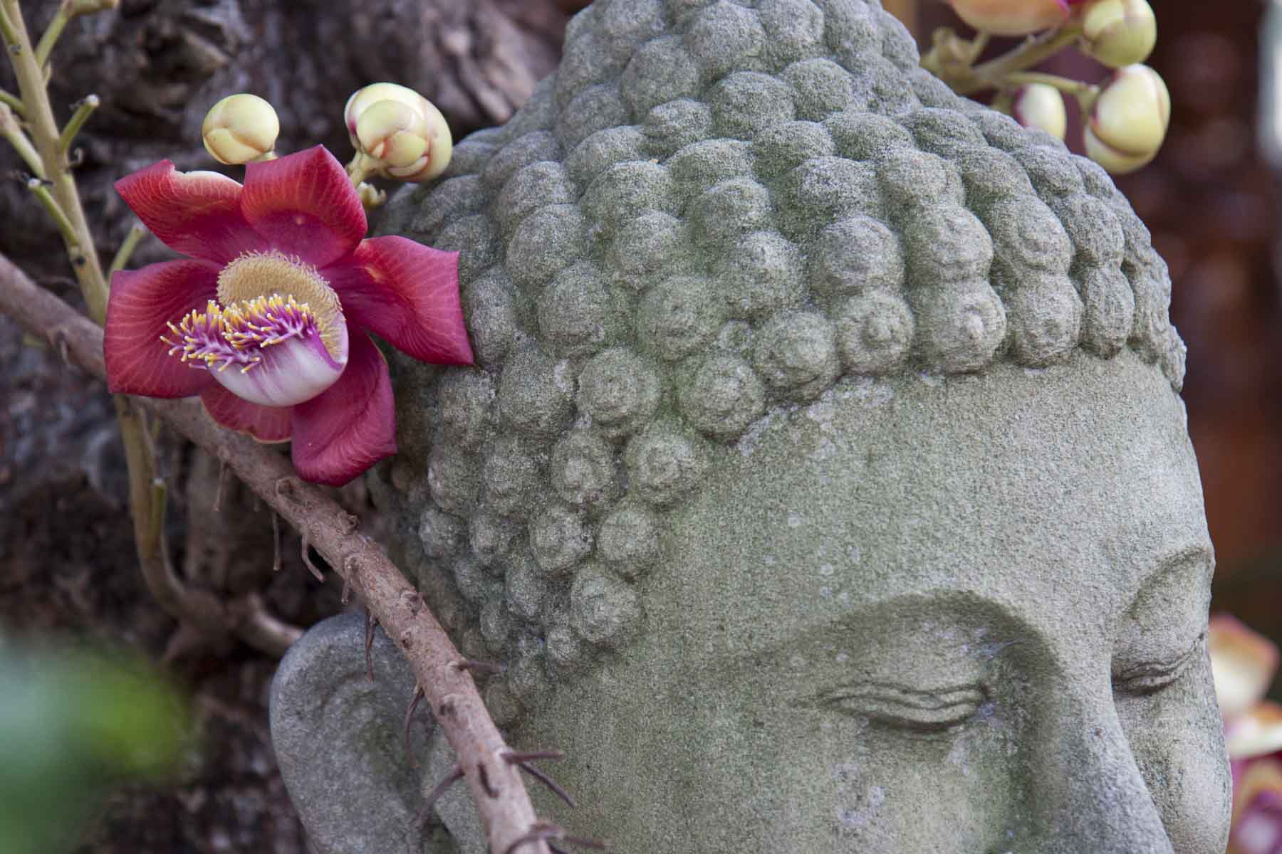 Detail of stone Buddha at the Silver Pagoda